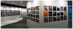 Thư viện ảnh Đào tạo Đại học Trực tuyến